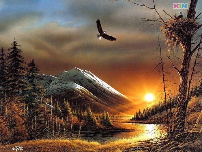 Oil Painting Desktop Wallpapers Photos Hd 700x525