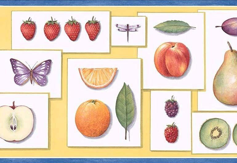 KITCHEN FRUITBUTTERFLYLEAF wallpaper border PB58002B eBay 770x530