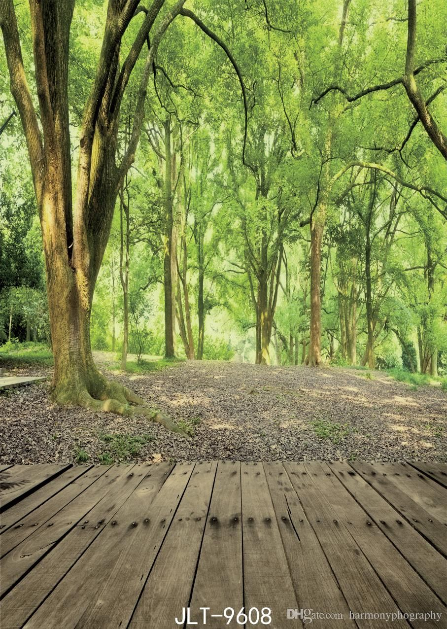 Image result for photoshoot nature background Photography studio 907x1276