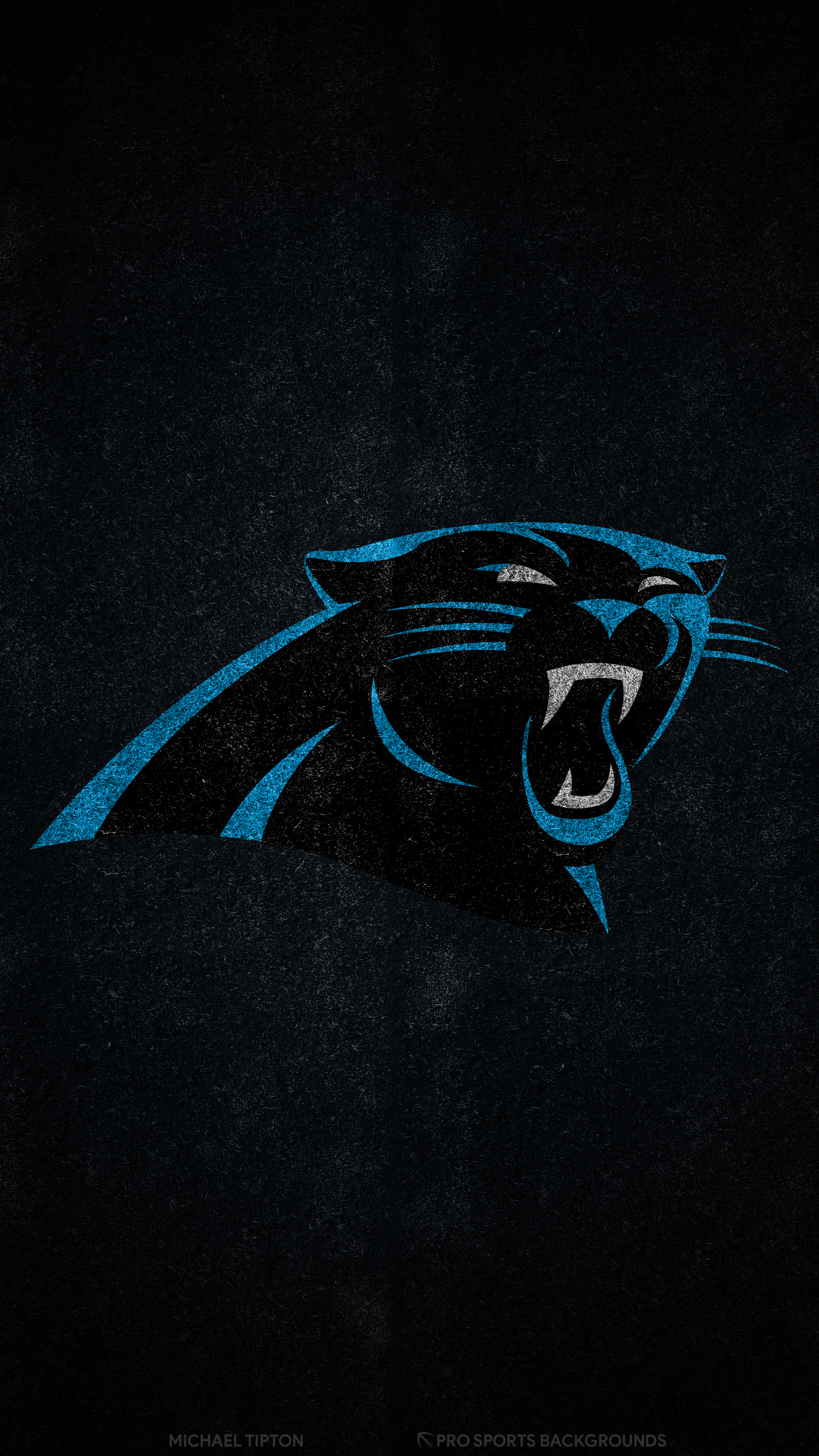 2019 Carolina Panthers Wallpapers Pro Sports Backgrounds 2160x3840