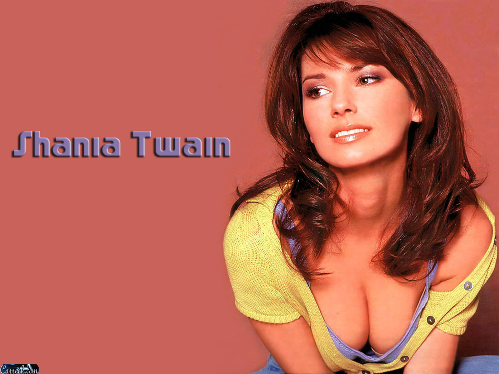 Shania Twain images Shania Twain HD wallpaper and background photos 1600x1200