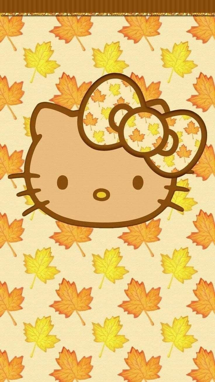 Pin by Lau Pui ChingPeggy on Hello Kitty Hello kitty wallpaper 736x1308