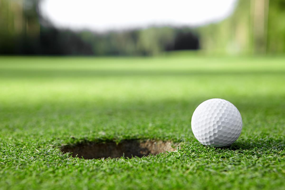 Golf Ball On Grass Macro Wallpaper HD 5774 Wallpaper High 1200x800