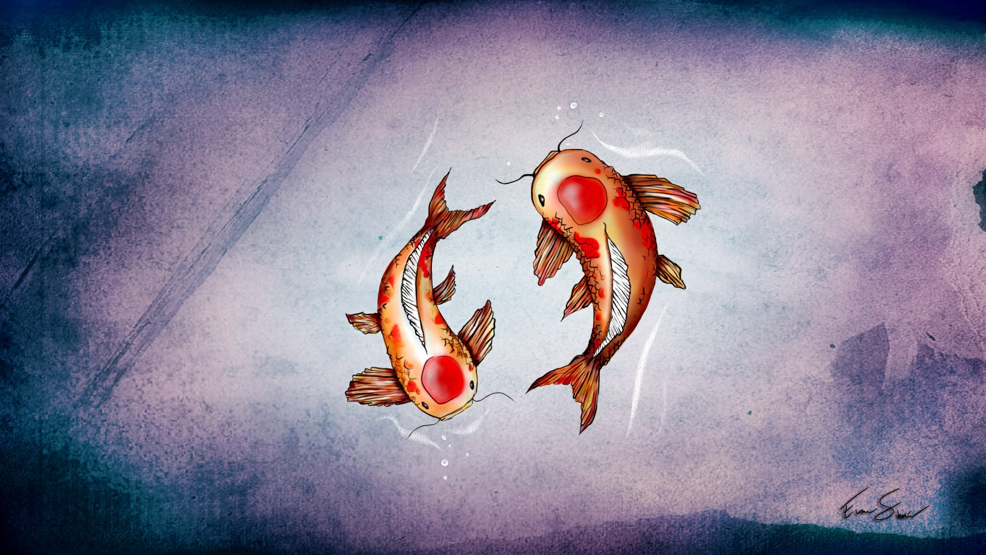 Iphone wallpaper hd fish - Coy Fish Wallpaper Wallpapersafari