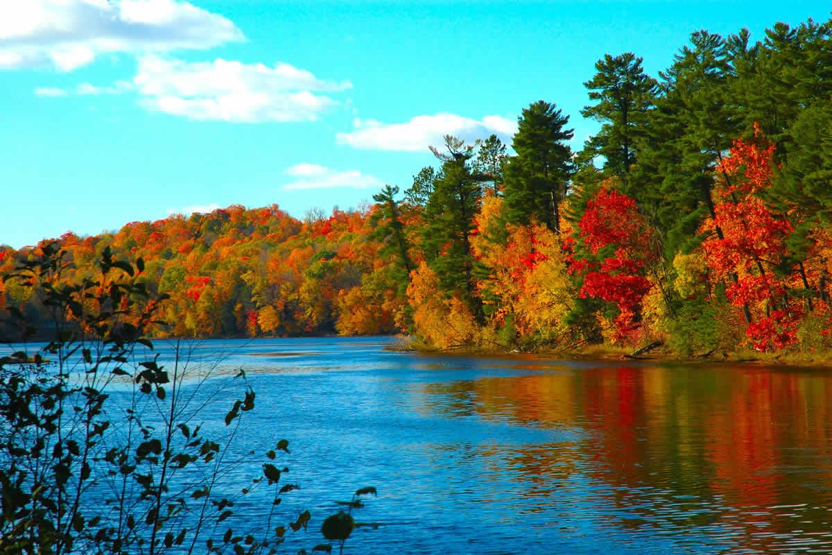 Widescreen Wallpaper Autumn Color Trees Fall River 1200x800jpg 1200x800