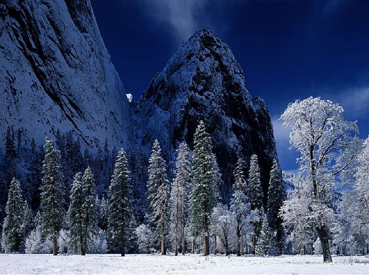 Winter Wallpaper   Bing Images Winter 1 Pinterest 736x549