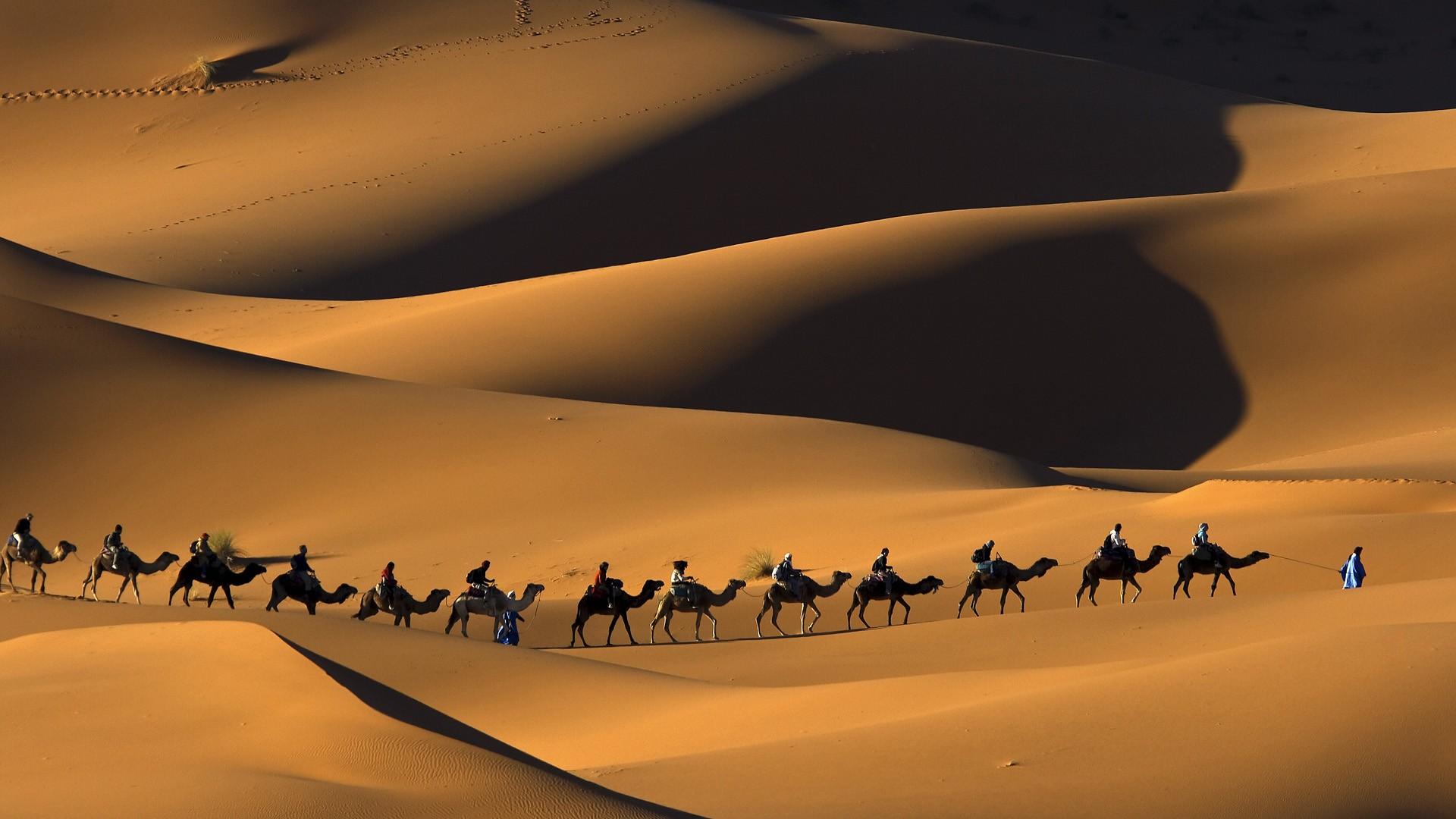 Музыка в пустыне  № 3622285 без смс