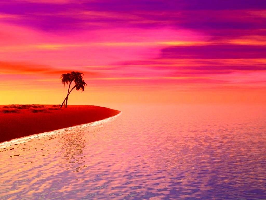 pink sunset wallpaper 1024x768