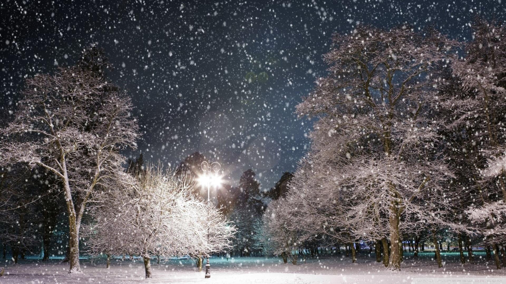 Snow At Night Wallpaper 1920x1080 Snow At Night 1920x1080