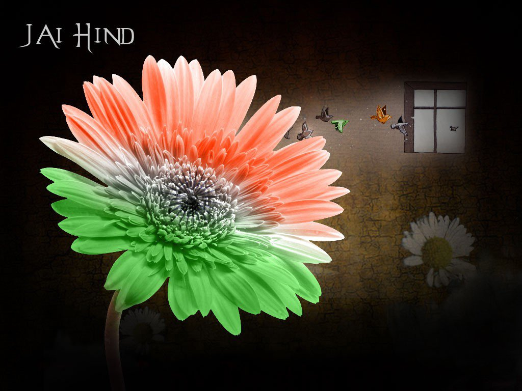 full hd wallpapers of independence dayflag of India Independence day 1024x768