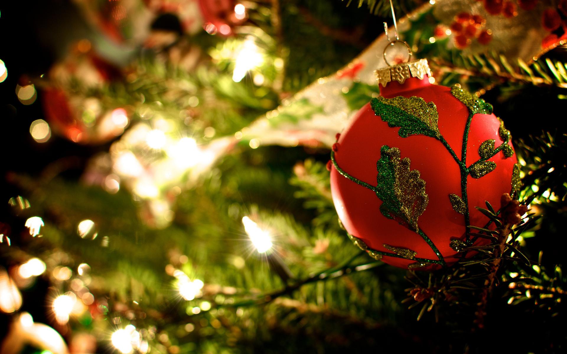 Christmas Lights Christmas Lights Wallpapers And Screensavers Wallpapersafari