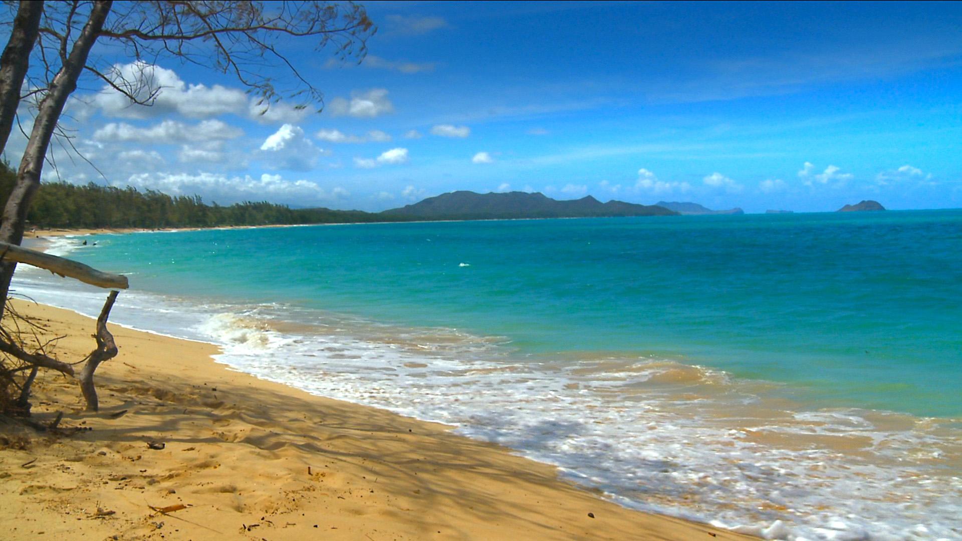 hawaii photos background screensaver beach beaches media 1920x1080