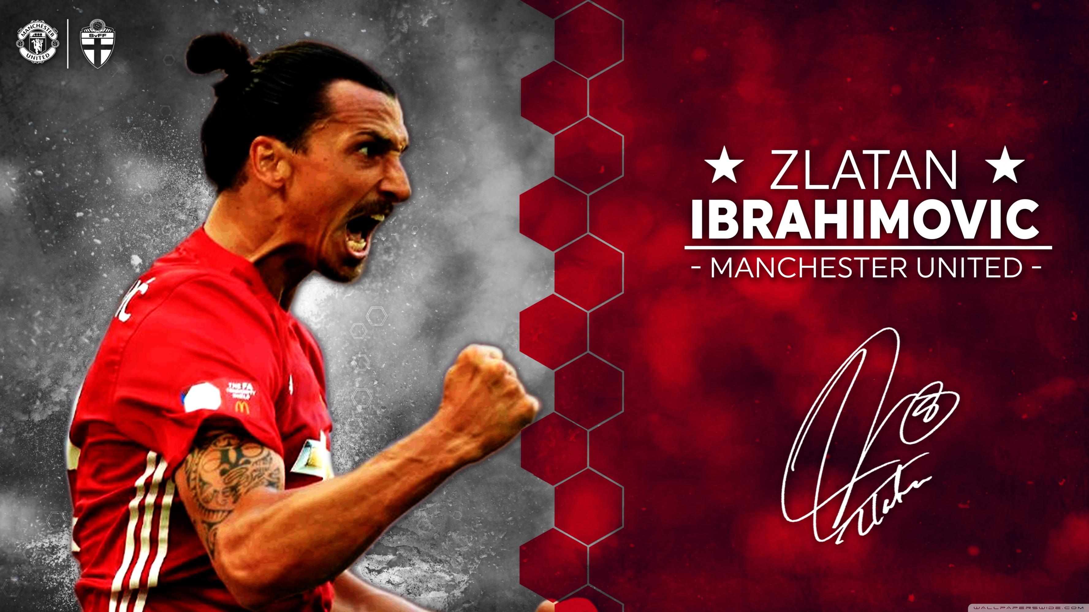Zlatan Ibrahimovic Manchester United 2016 17 4K HD Desktop 3554x1999