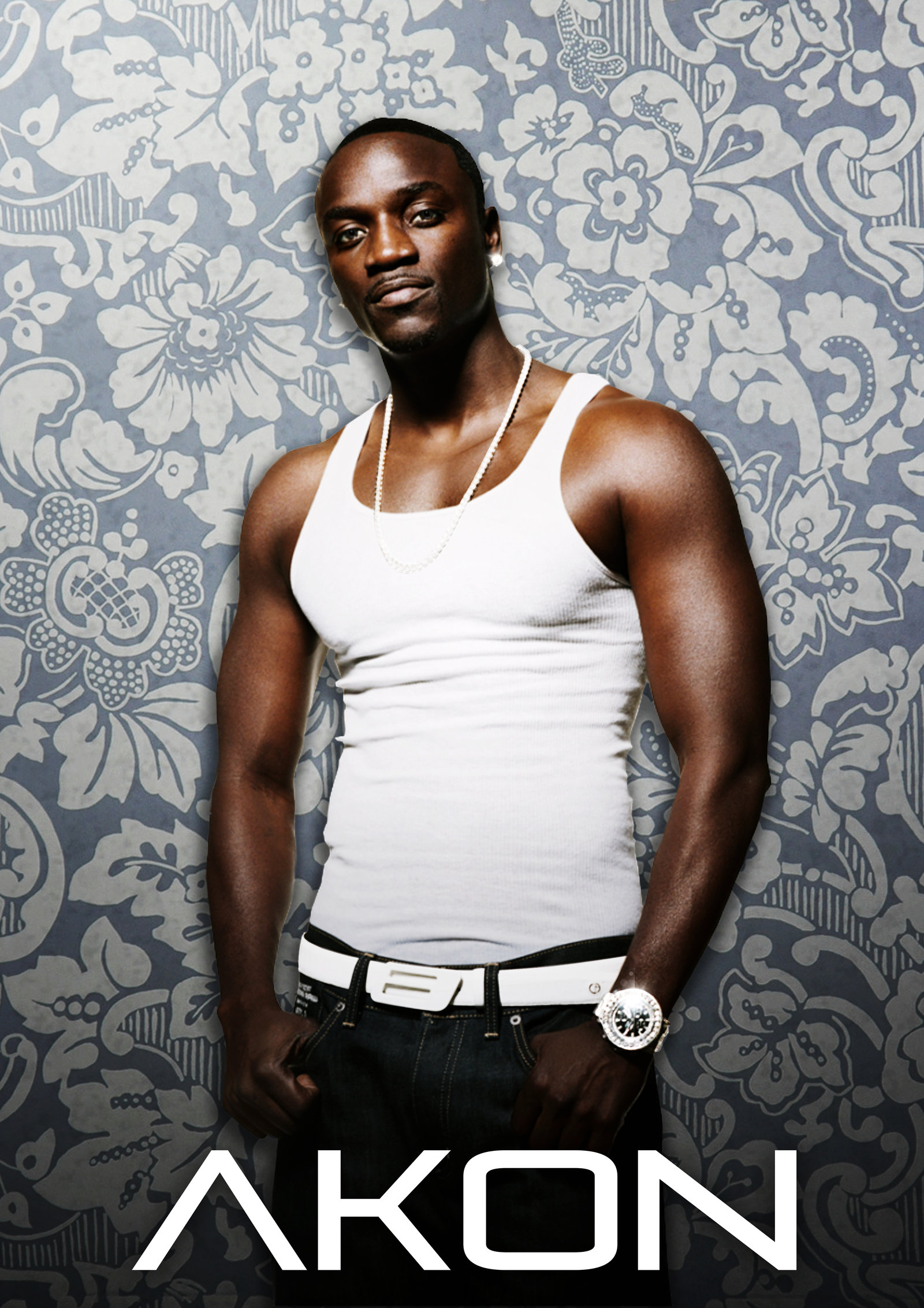 71+] Akon Wallpaper on WallpaperSafari
