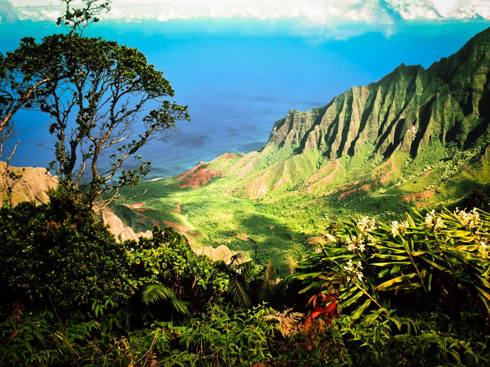kauai hawaii wallpaper the desktop wallpaper