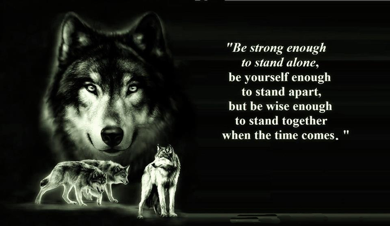 13+] Wolf Quotes Wallpapers on WallpaperSafari