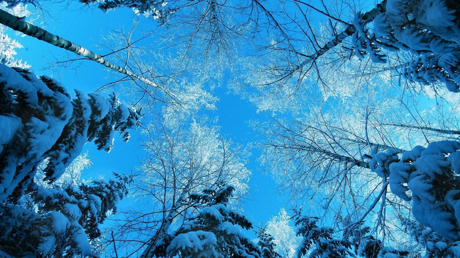 1600x900 hd desktop wallpaper winter -#main