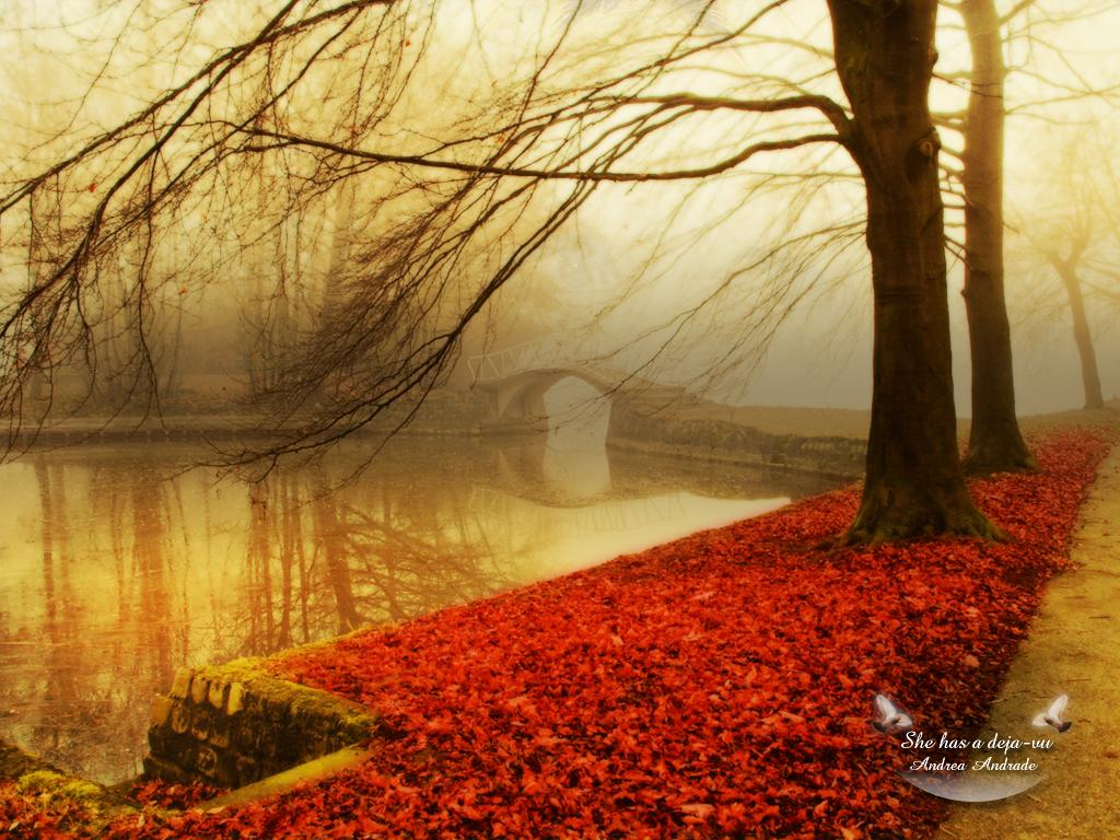 autumn wallpaper widescreen autumn forest wallpaper autumn wallpaper 1024x768