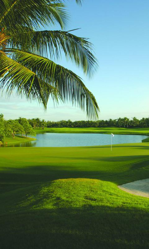 Free Download Golf Course Wallpapers Android Apps On Google Play 480x800 For Your Desktop Mobile Tablet Explore 98 Golf 7 Wallpapers Golf 7 Wallpapers Golf Backgrounds Golf Wallpaper