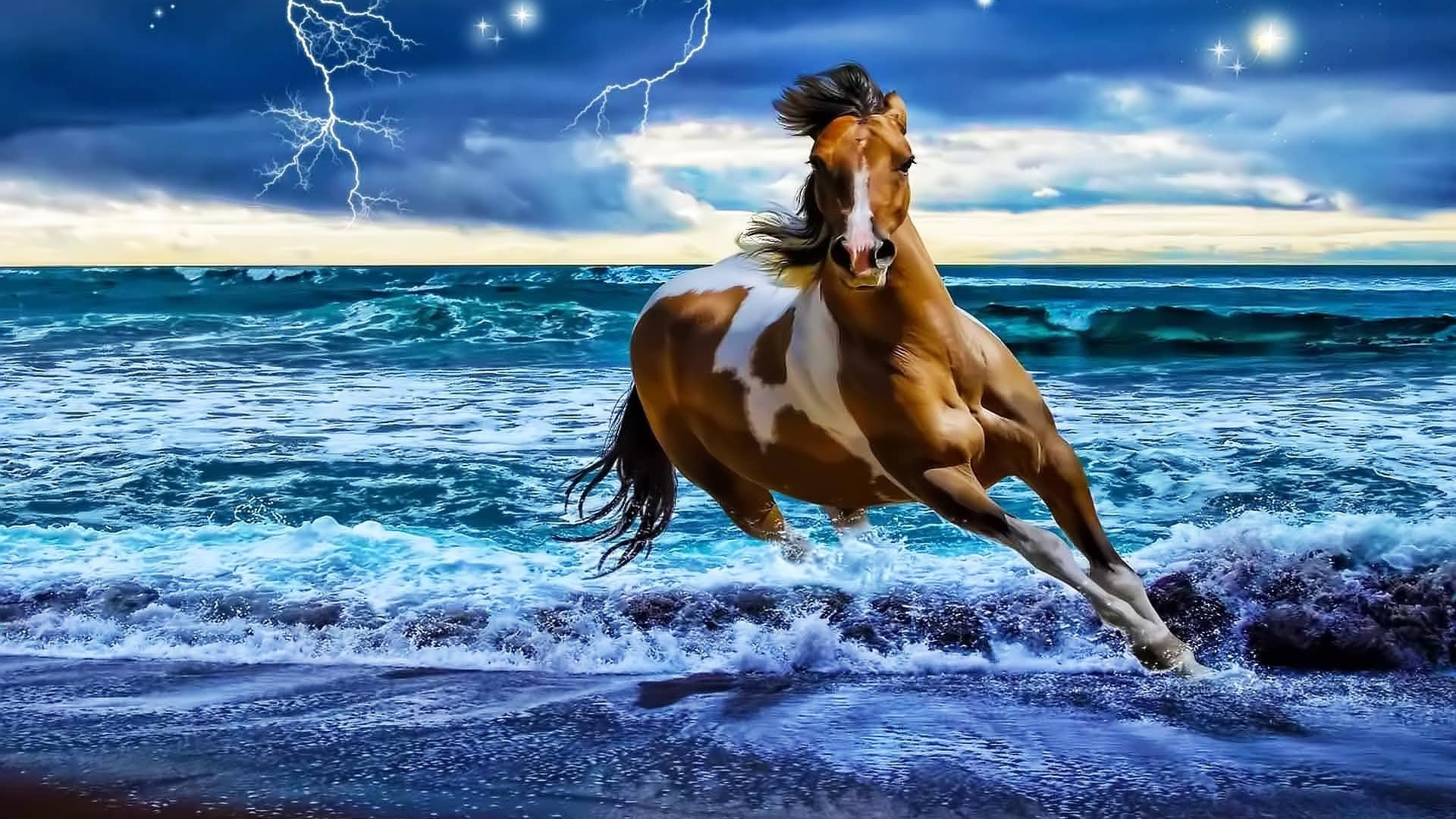Horses On The Beach Wallpaper Wallpapersafari