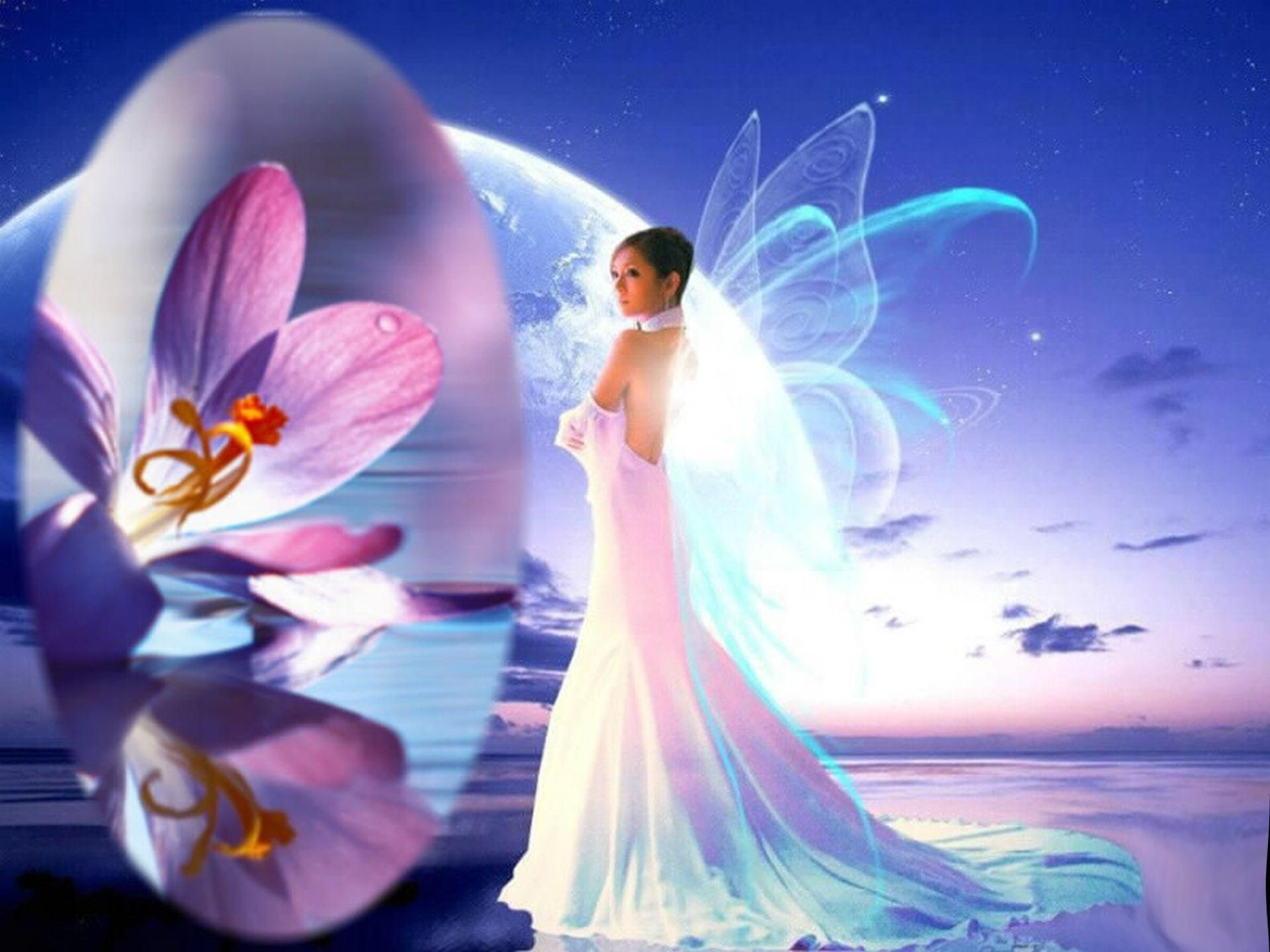 70 Hd Fairy Wallpapers on WallpaperPlay 1920x1440