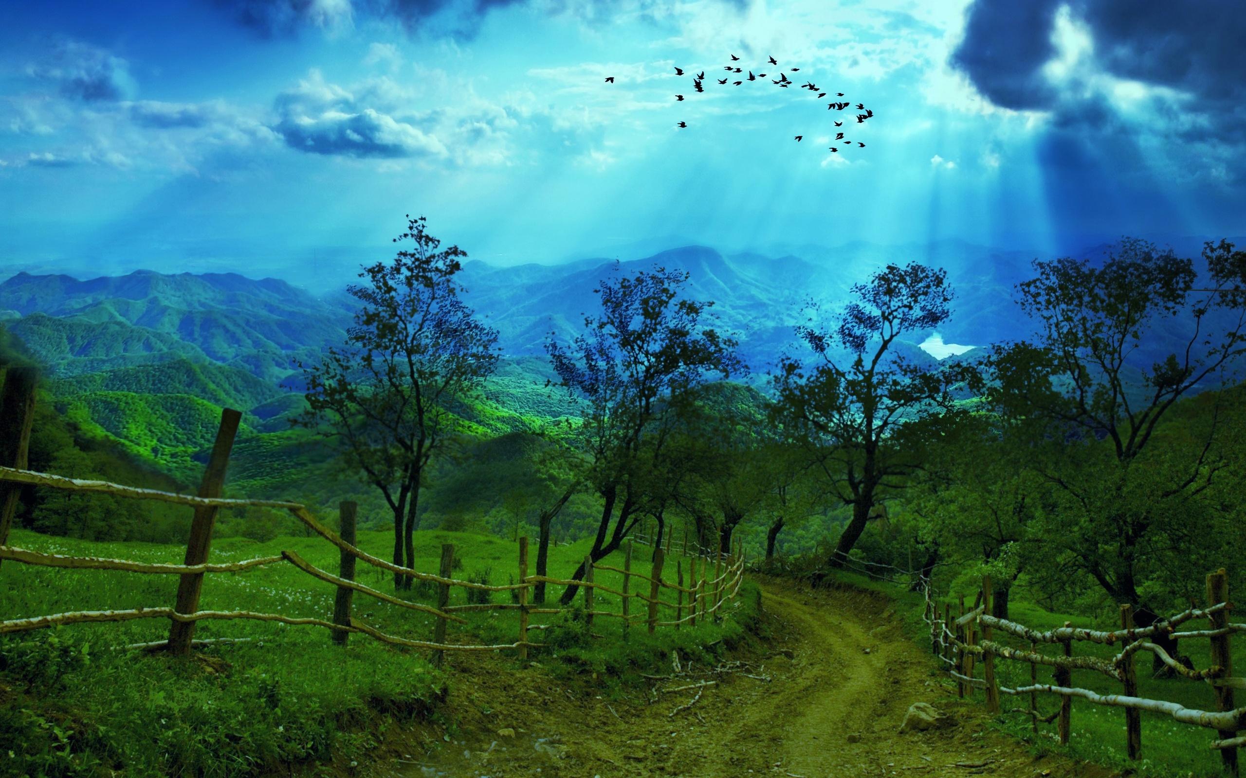 8K Ultra HD Nature Wallpaper