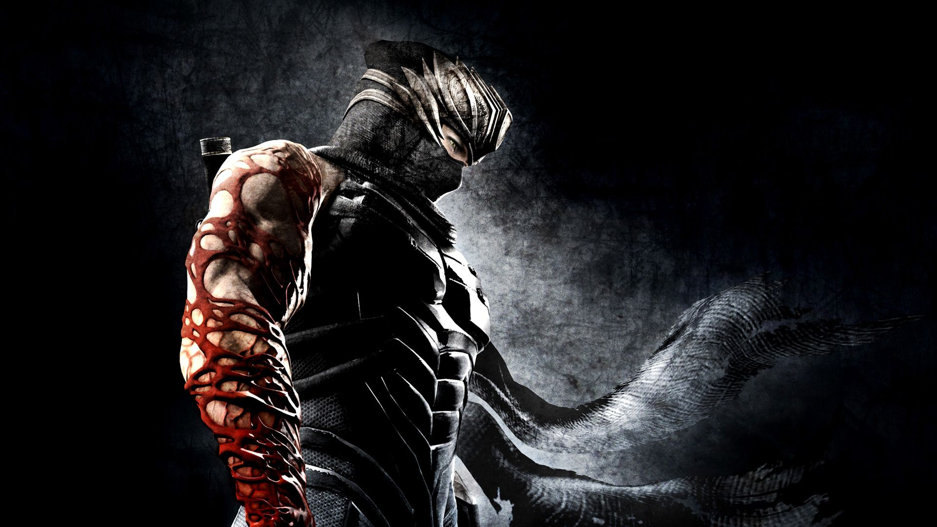 Ninja Gaiden 3 Review PS3360 Ninja wallpaper Warriors 1920x1080