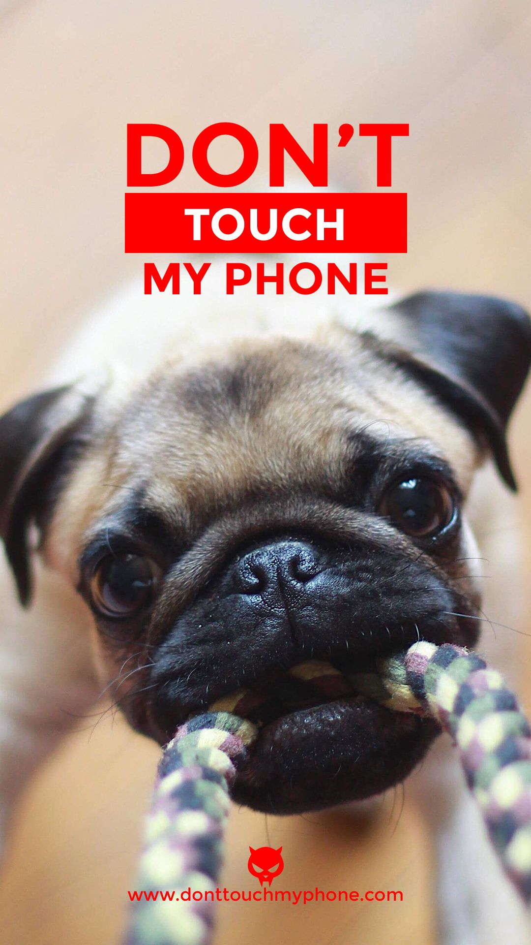 Cute dog lock screen Dont touch my phone wallpapers Cute mobile 1080x1920