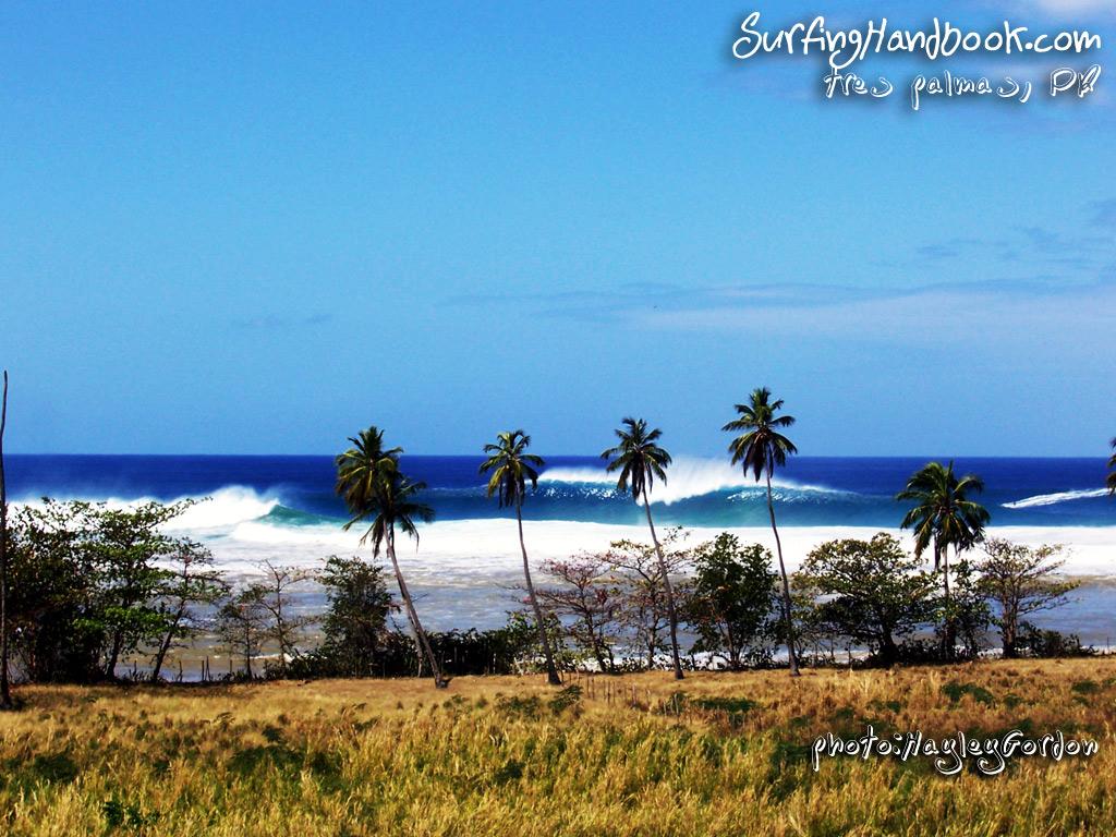 Longboard Surf 1024x768