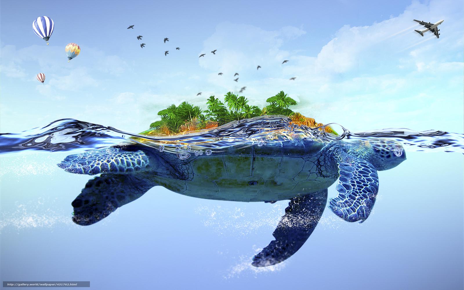 Download wallpaper sea turtle back island desktop wallpaper in 1600x1000