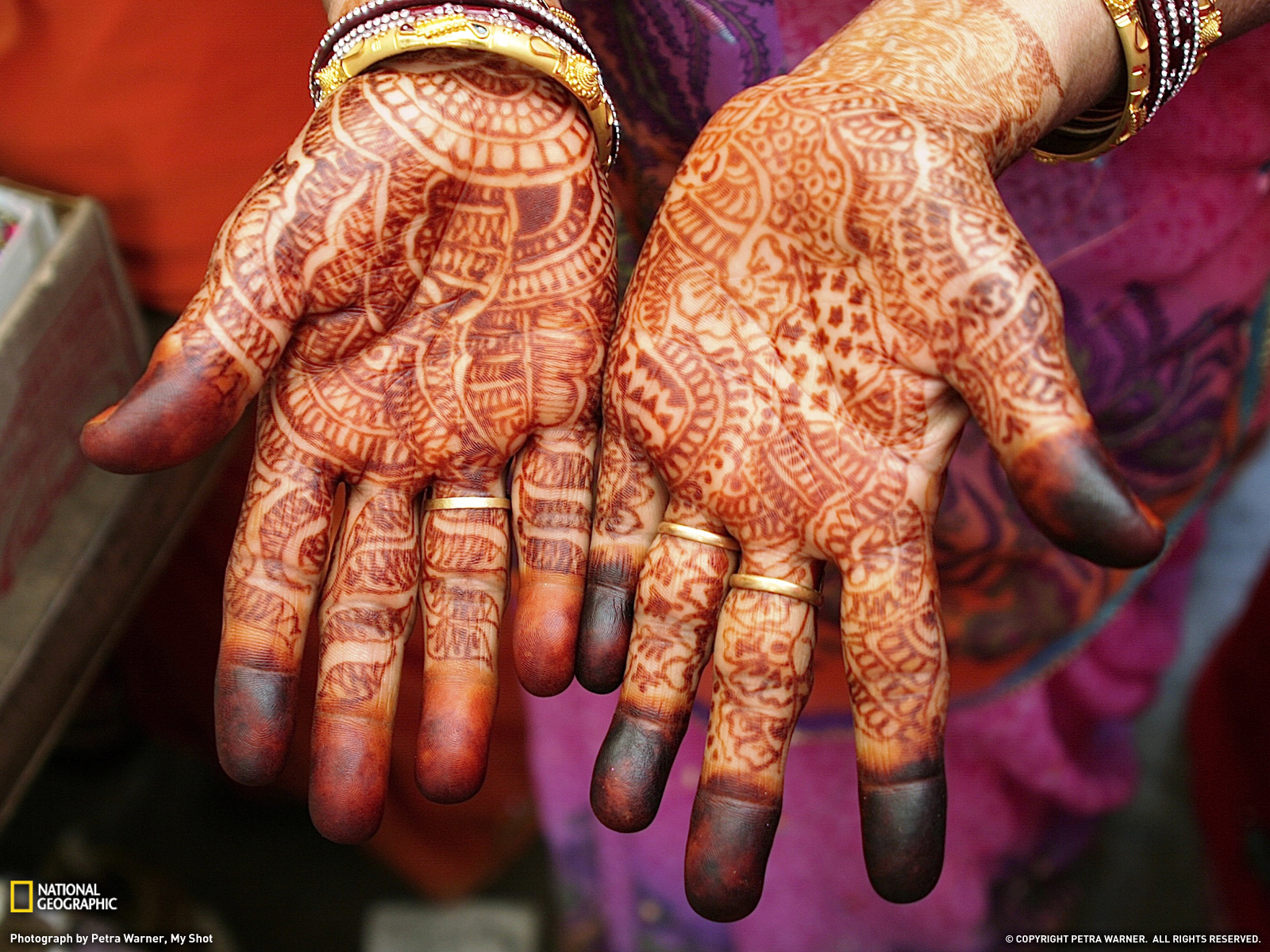 Henna Hands Photo India Wallpaper National Geographic Photo of 1600x1200