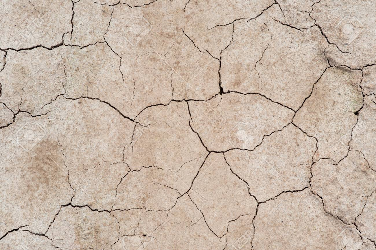 Cracked Soil Dry Earth Texturebackground Stock Photo Picture And 1300x867