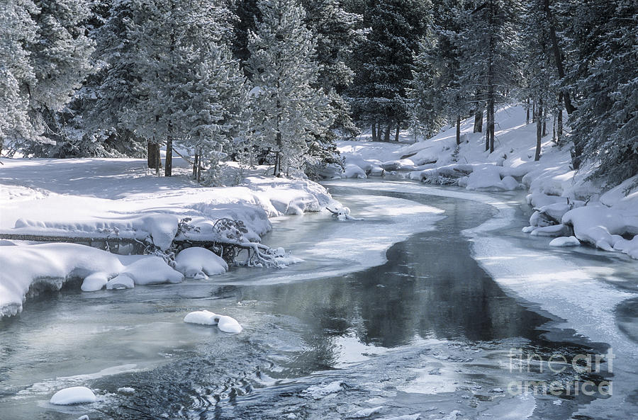 Free Download Winter On The Firehole River Yellowstone