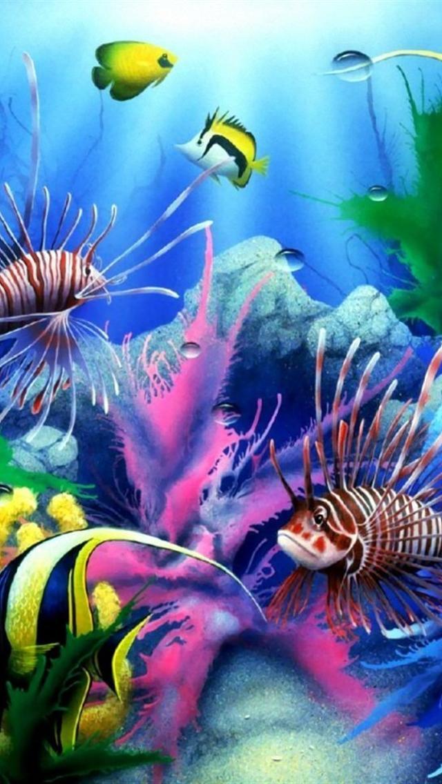 free cool underwater world iphone 5 hd wallpaper 640x1136 hd iphone 5 640x1136