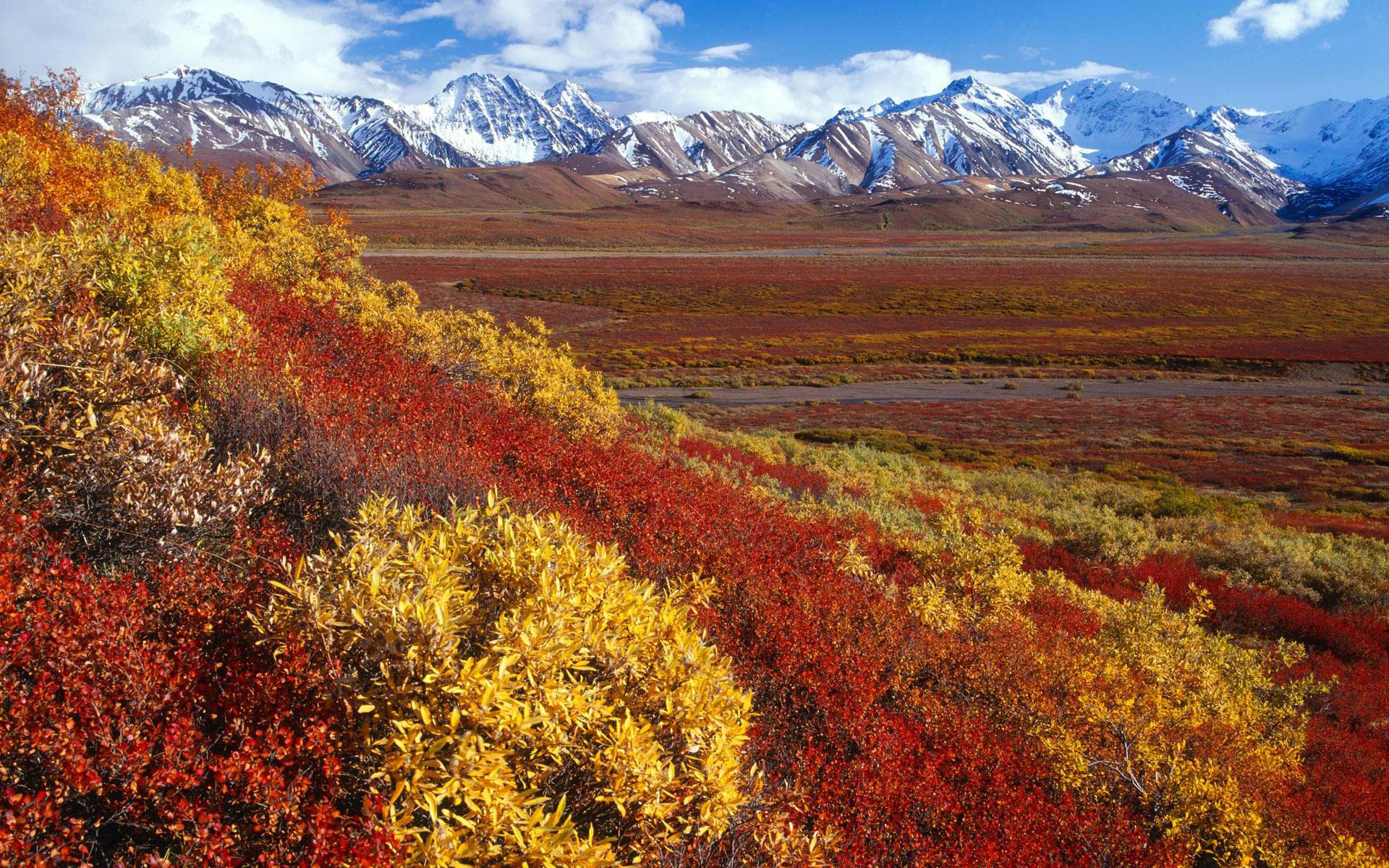 wallpaper Alaska Fall Wallpaper hd wallpaper background desktop 1920x1200