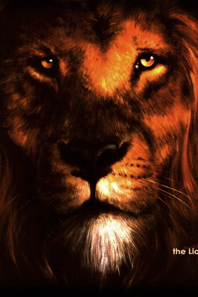 Lion Of Judah Wallpaper 640x960