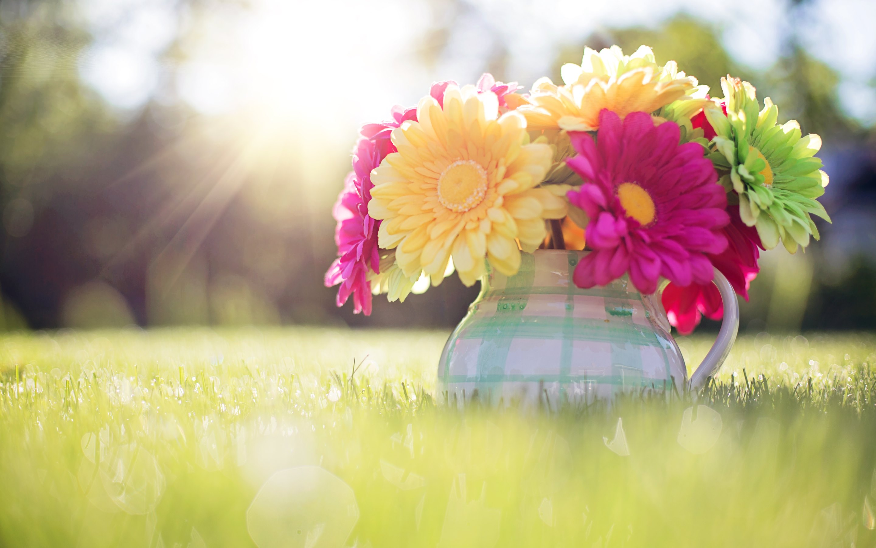 Spring HD Wallpapers 183 4K 2880x1800