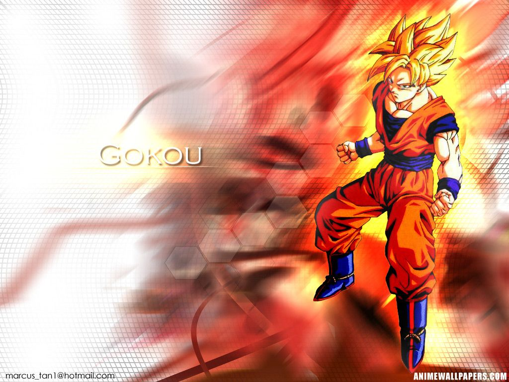 Dragon Ball Z Goku 529 Hd Wallpapers akpaarmdaa890mcom 1024x768