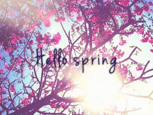 8 best images about Hello Spring First day 500x375