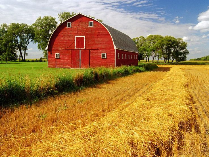 Red Barn Manitoba Canada Wallpaper iPhone Wallpaper Facebook 736x552