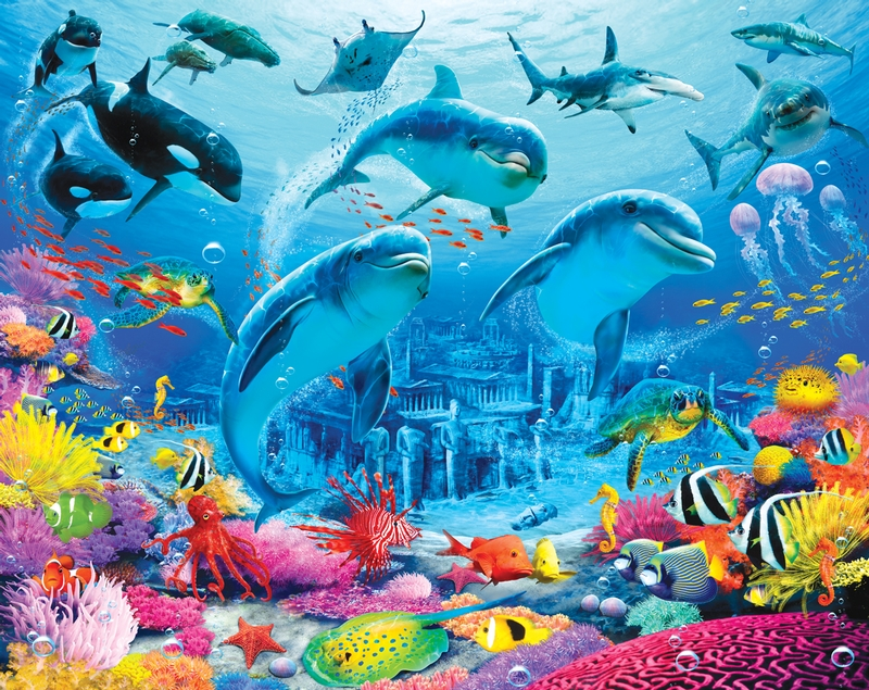 Cheap Baby Clothes Sea Life Adventure Childrens Bedroom Wallpaper 800x635