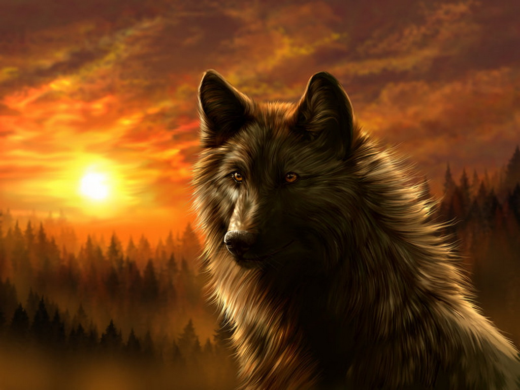 Dark Wolf Wallpaper   Best HD Wallpapers 1024x768