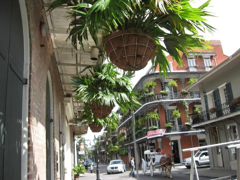 New Orleans Bilder French Quarter HD Hintergrund and background 1024x768