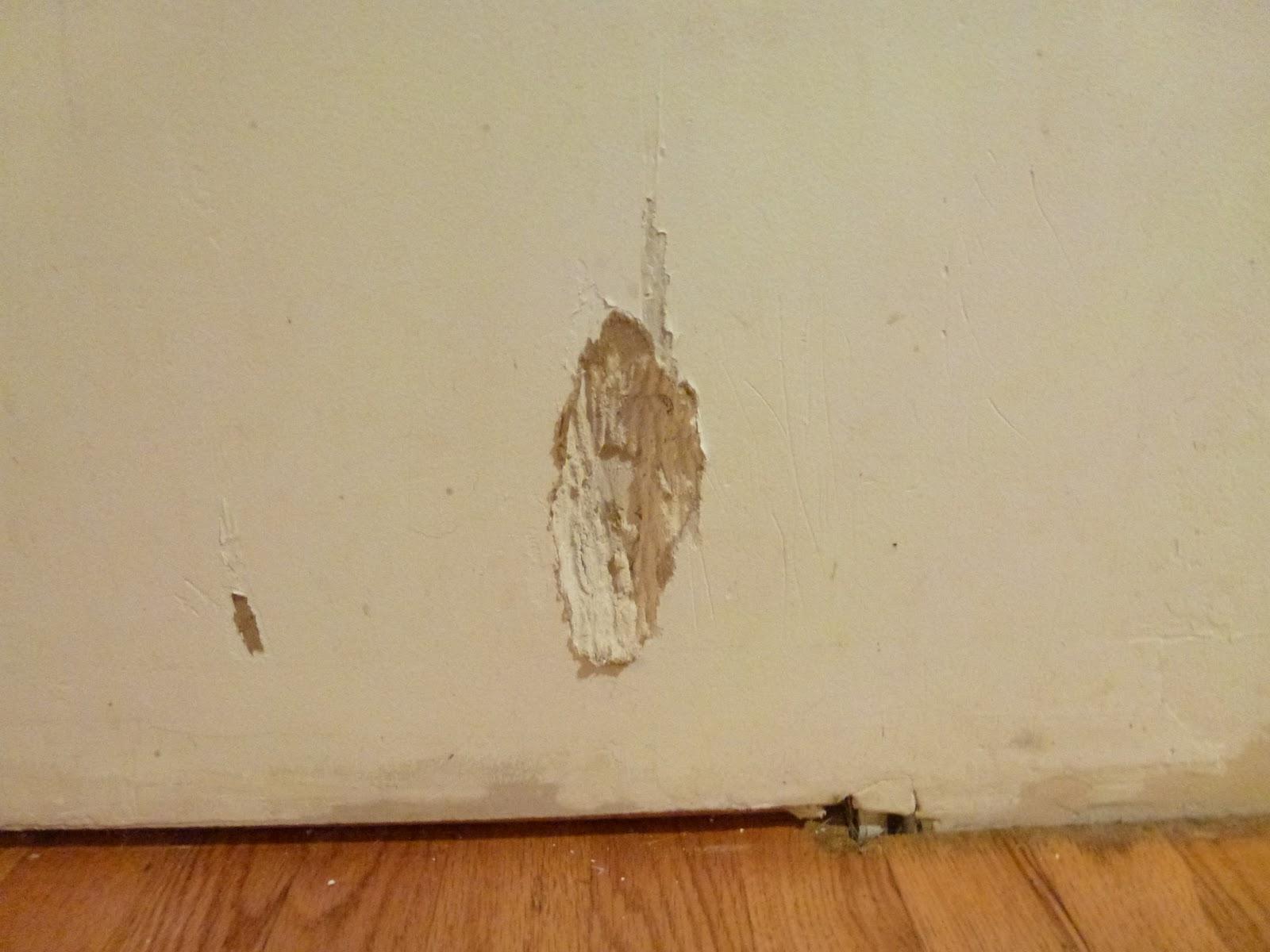 Drywall Repair Drywall Repair After Removing Wallpaper Is Primer 1600x1200