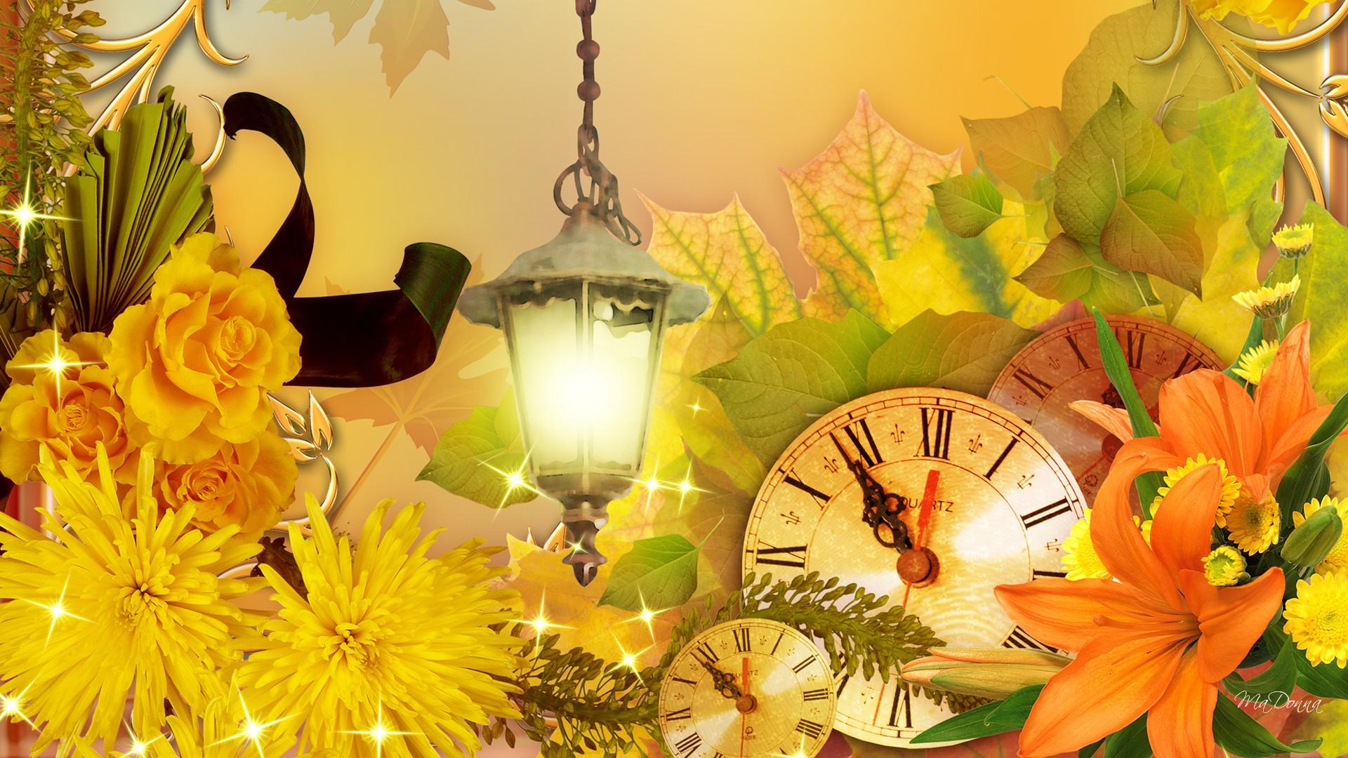 tiempo de flores de otoo fondo de pantalla   ForWallpapercom 1920x1080