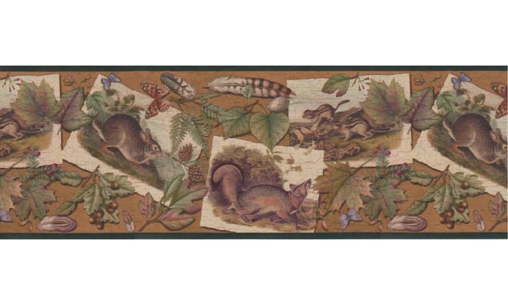 Home Animal Borders Animals Wallpaper Border B33637 1000x600