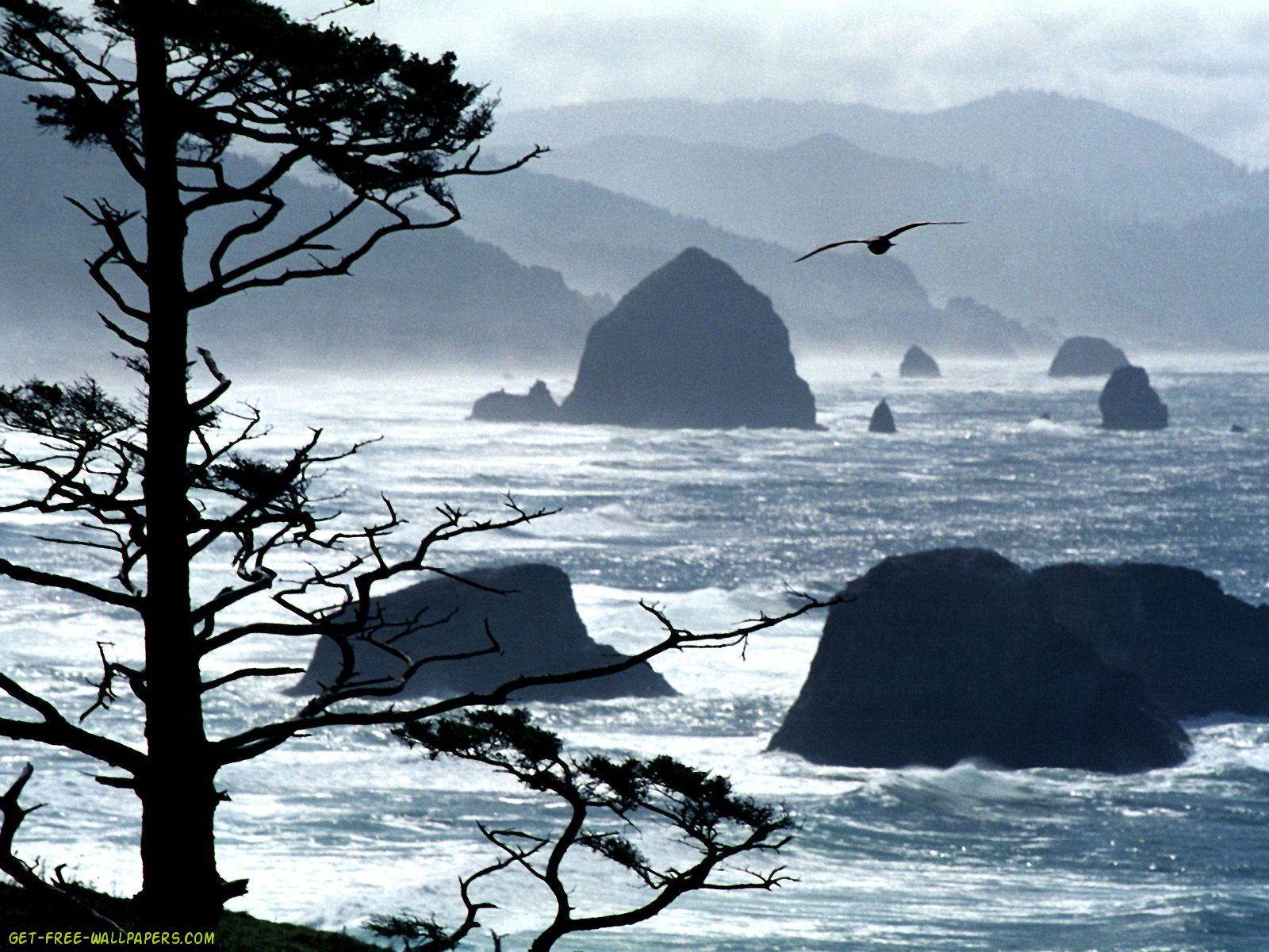 Oregon coast online dating