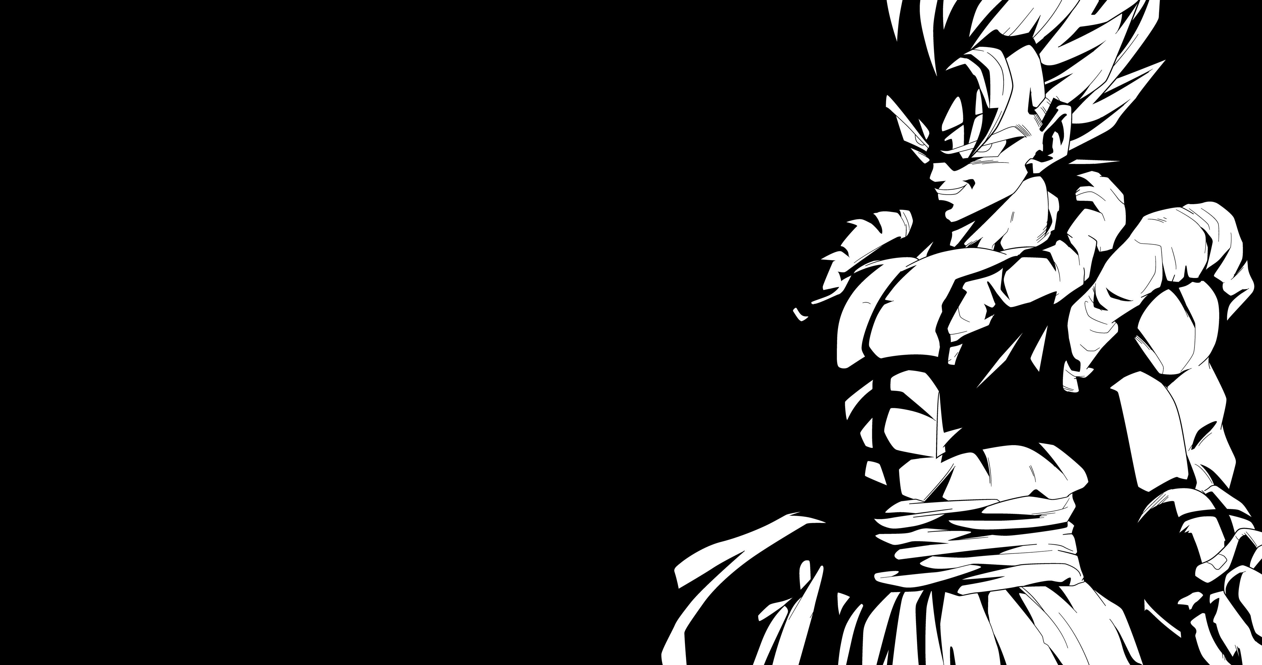 19 Dragon Ball Z Black And White Wallpapers On Wallpapersafari