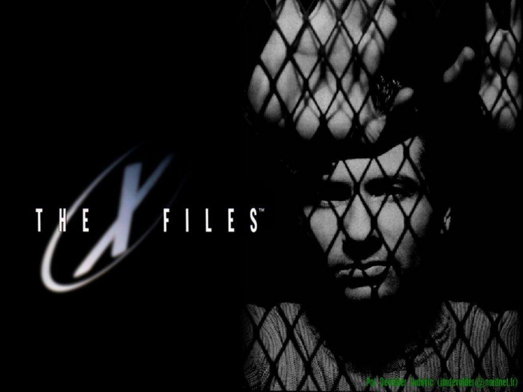The X Files   The X Files Wallpaper 7776111 1024x768