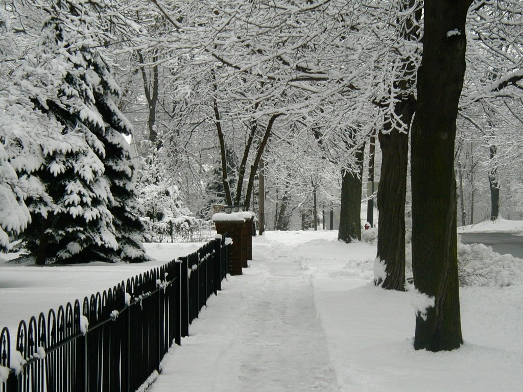 <b>Winter Computer Wallpapers</b>, <b>Winter</b> Pics for <b>Desktop</b> | 40 ...